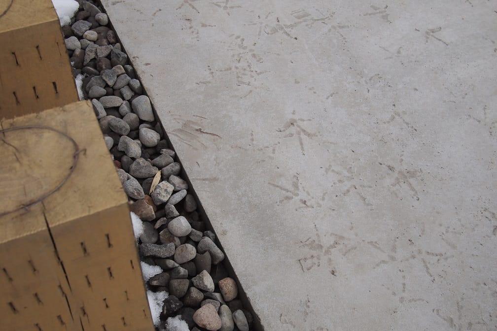 鶏の足跡がついた歩道